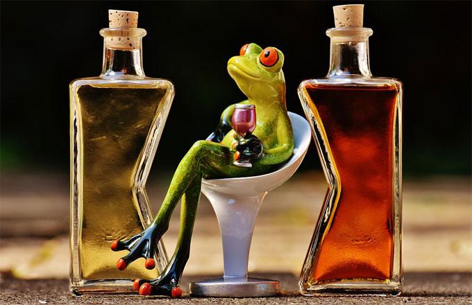 カエルがお酒を飲んでいるイメージ